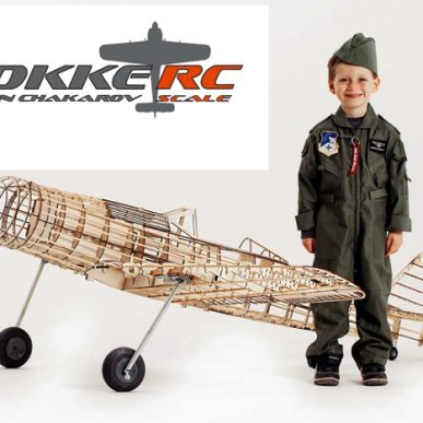 "Focke-Wulf 190 <span class=""focuspoint2"">D9</span> 1/5 Scale Model Wooden Kit"