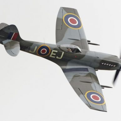 "Spitfire MK XIV <span class=""focuspoint2"">E / C</span>  1/4 Scale Model Wooden Kit"