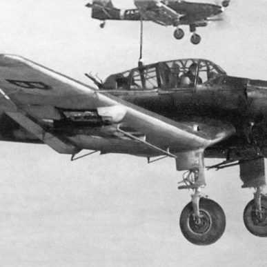 "Ju-87 <span class=""focuspoint2"">D3-5 </span>Stuka 1/5 Scale Model Wooden Kit"